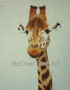 Giraffe Watermark